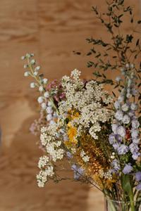 delphinium breckenridge wedding flower